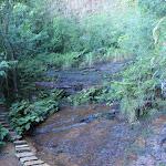 Small creek crossing (181782)