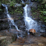 Lodore Falls (182319)