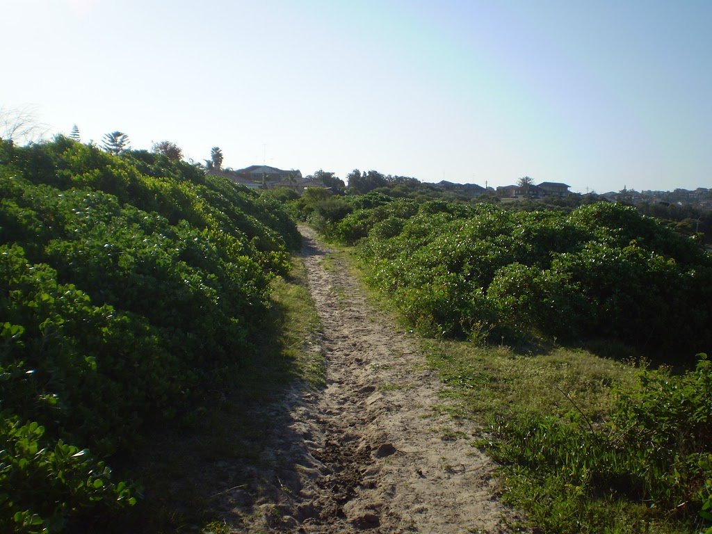Sandy track near Maroubra Bay  (18318)