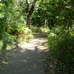 Trail near Botany Discovery Centre (18390)