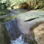 Small cascade at Lillian's Glen (185133)
