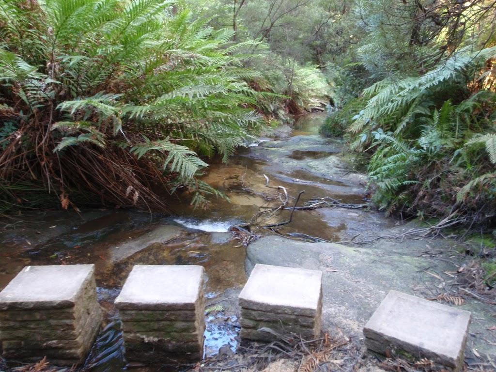 Stepping stones across Lillian's Glen