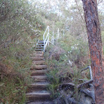 Stairs along the Nature Track
