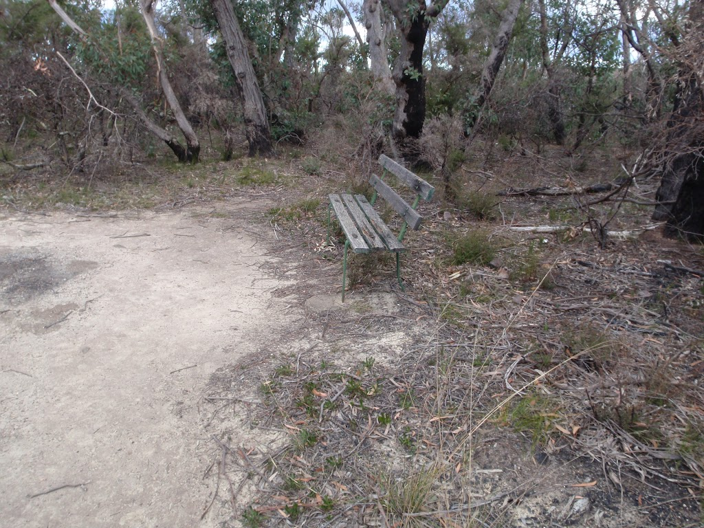 Bench alongside the track (186345)
