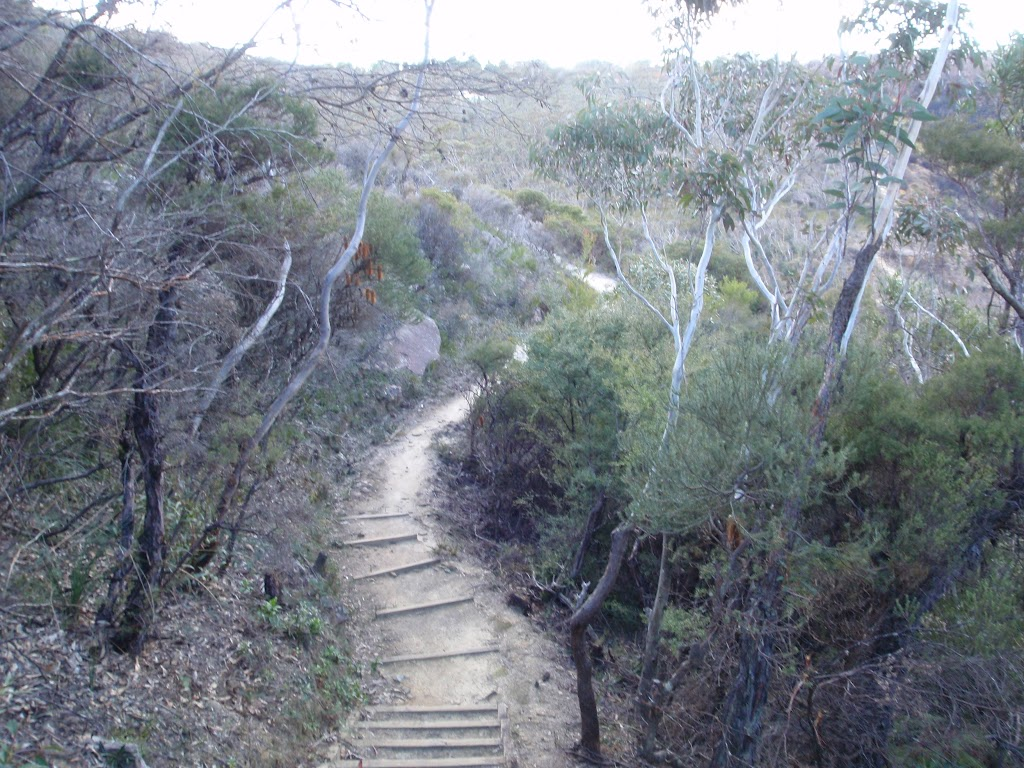 Track to Golf Links Lookout
