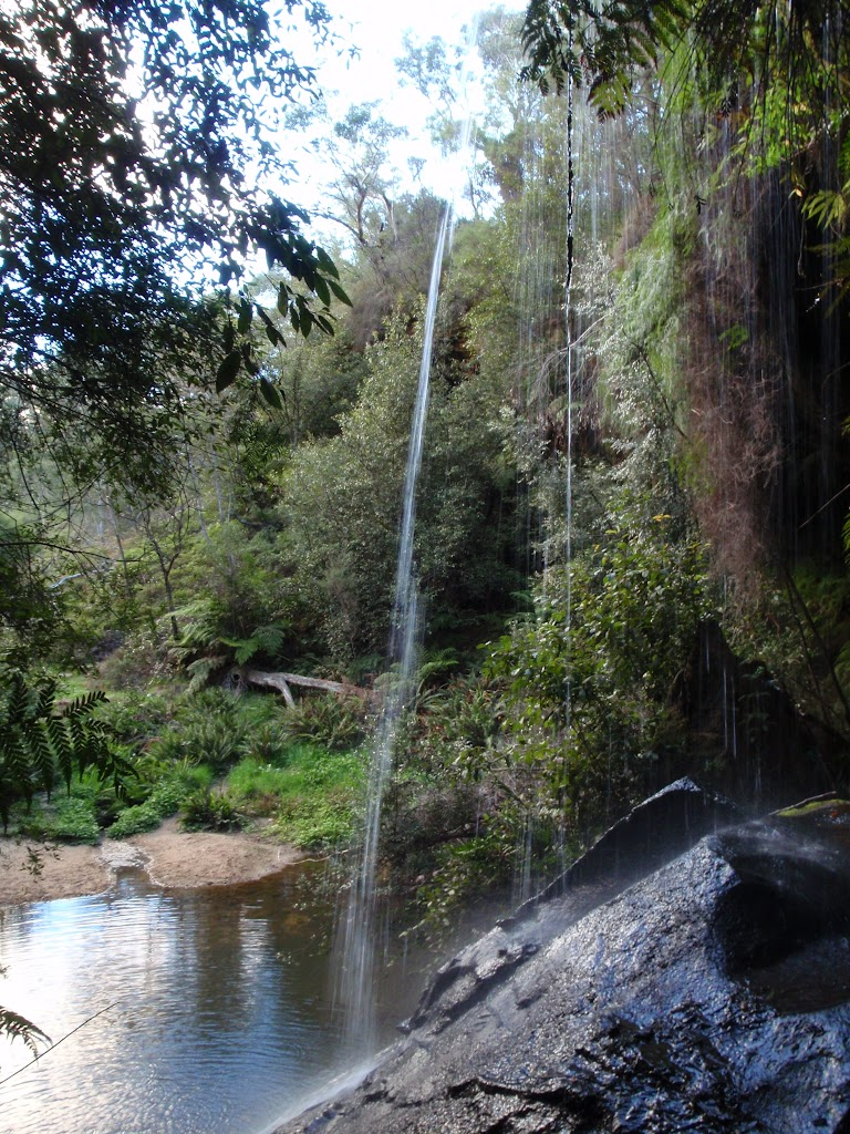 Waterfall next to Lyrebird Dell