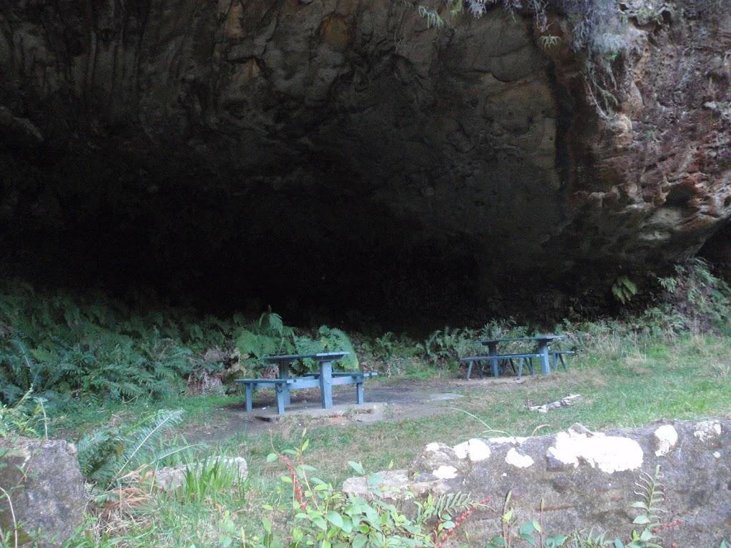 Lyrebird Dell picnic area