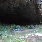 Lyrebird Dell picnic area (186789)