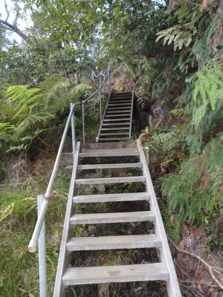 Stairs on Lyrebird Dell Track