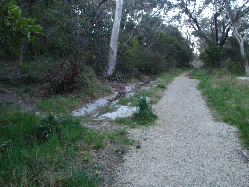 Leura Dirt Trail