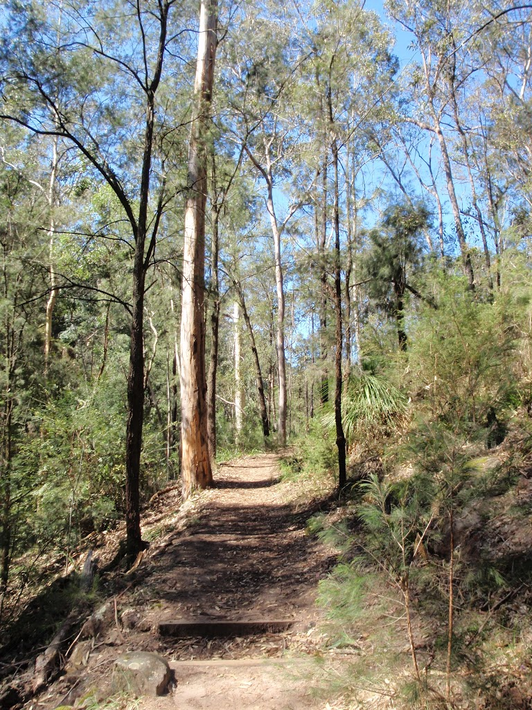 Nepean River track