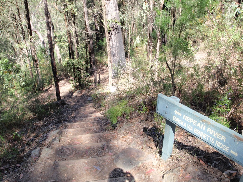 Track leading down to the Nepean River