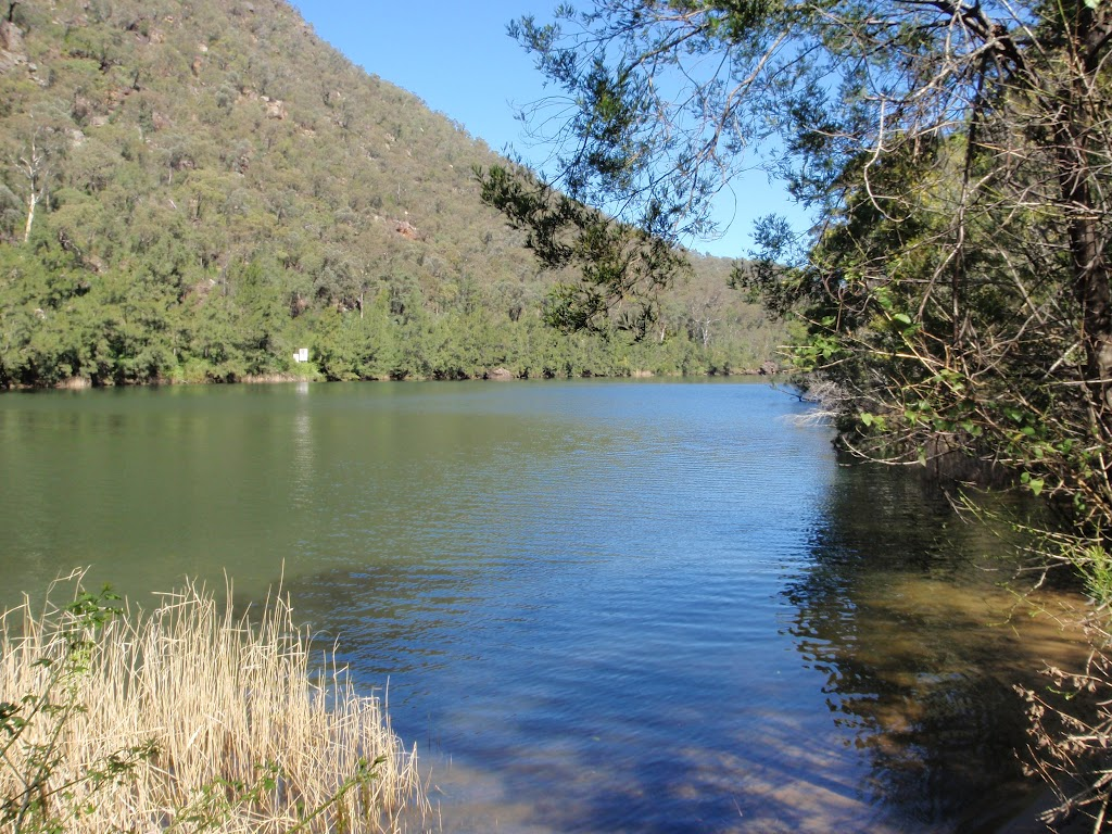 Nepean River up stream