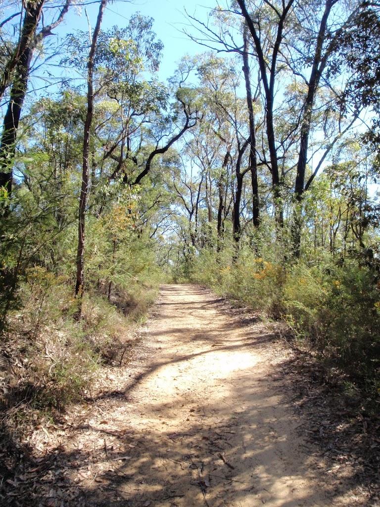 Bennetts Ridge trail