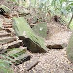 Steps (191150)