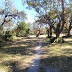 Picnic area at Bateau Bay