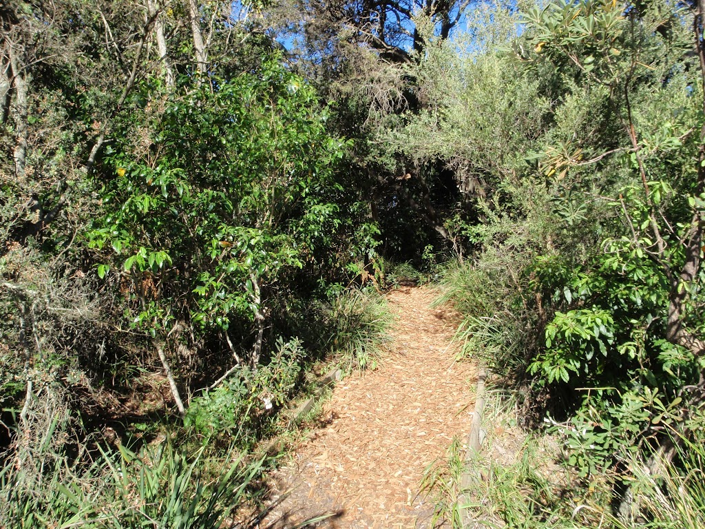 Norah Head nature trail