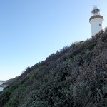 Norah Head lighthouse from below (194876)