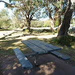 Picnic area above Bateau Bay beach (195176)