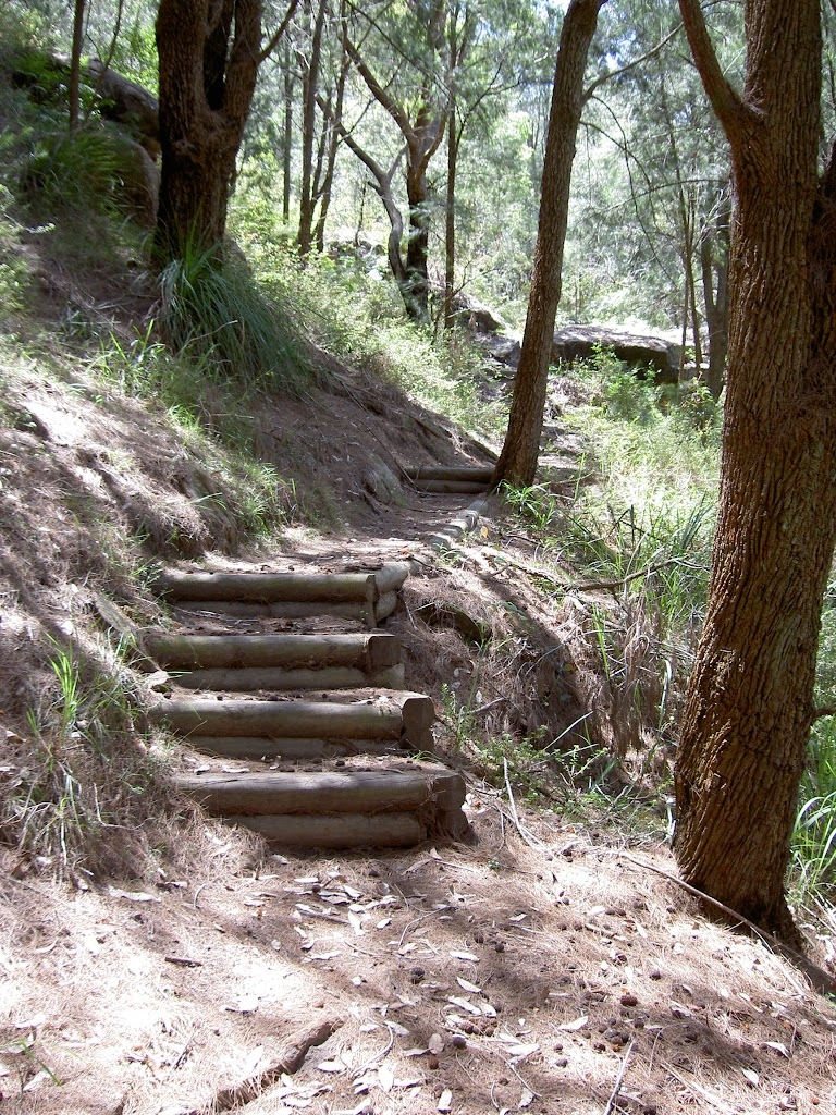 steps leading up into the Brisbane Waters National Park