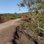 Edge of rock platform on Thommos Loop trail (196706)