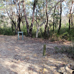 Top of track to Kariong Brook