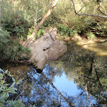 Kariong Brook pool