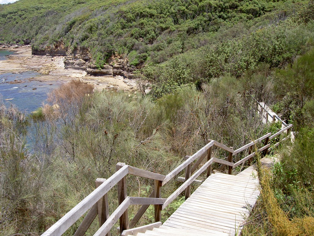 Bouddi Trail boardwalk to Gerrin Point (19877)