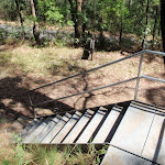 Casuarina link trail stairs (198817)