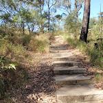 Sandstone steps (198829)
