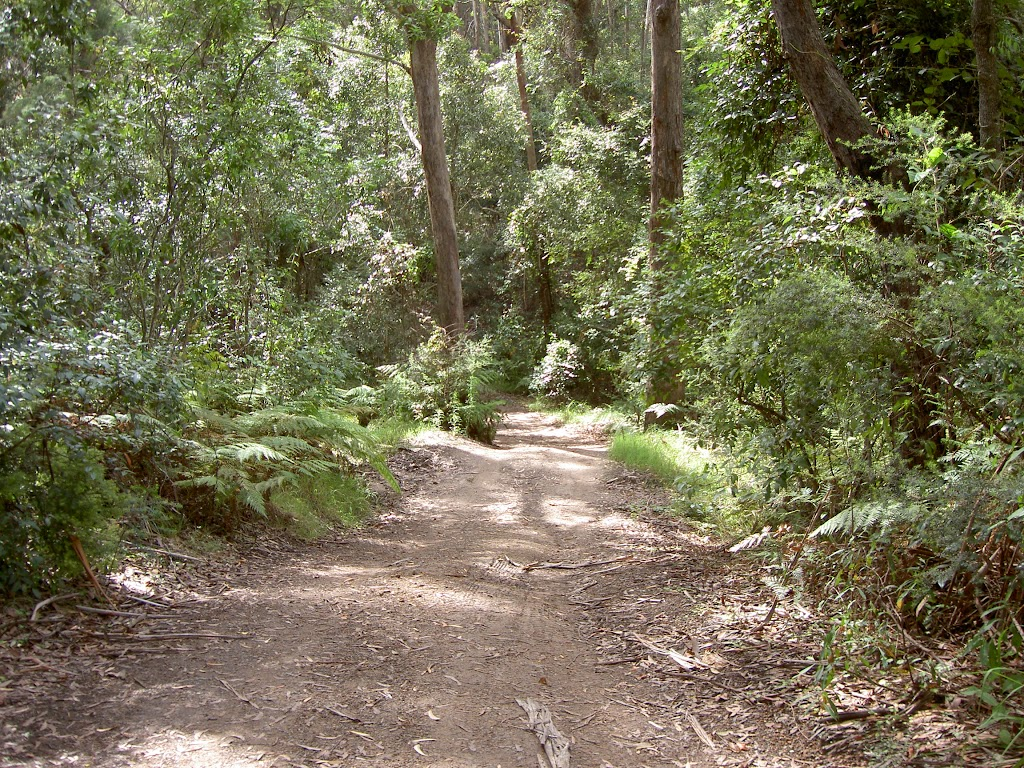Graham Drive Track to Little Beach