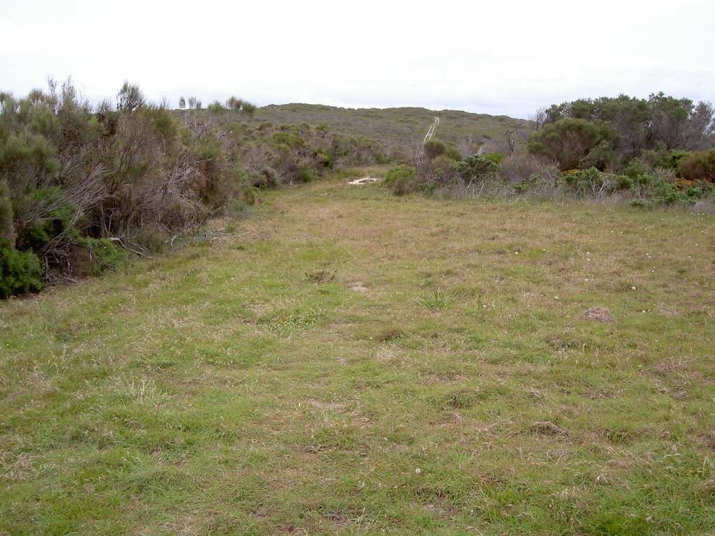 Grassy Clearing north of Bombi Headland (20036)