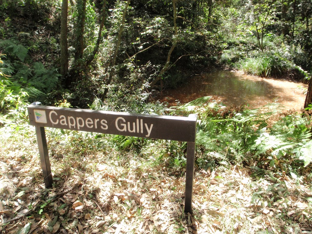 Cappers Gully
