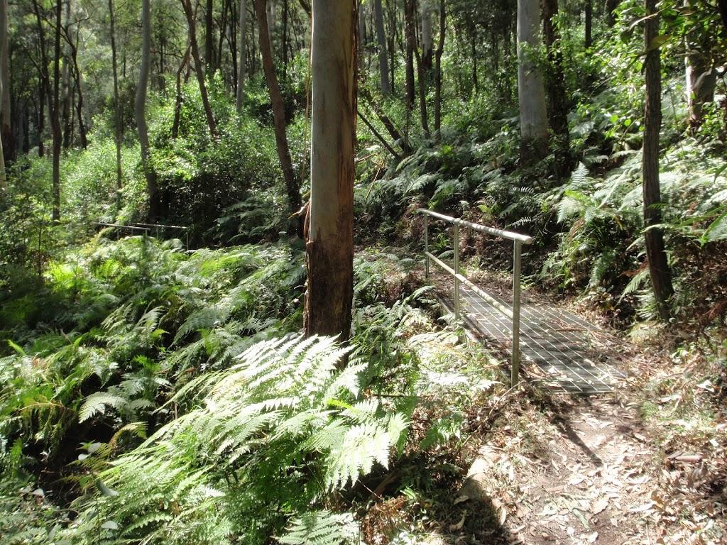 Metal footbridge on the Rainforest walk