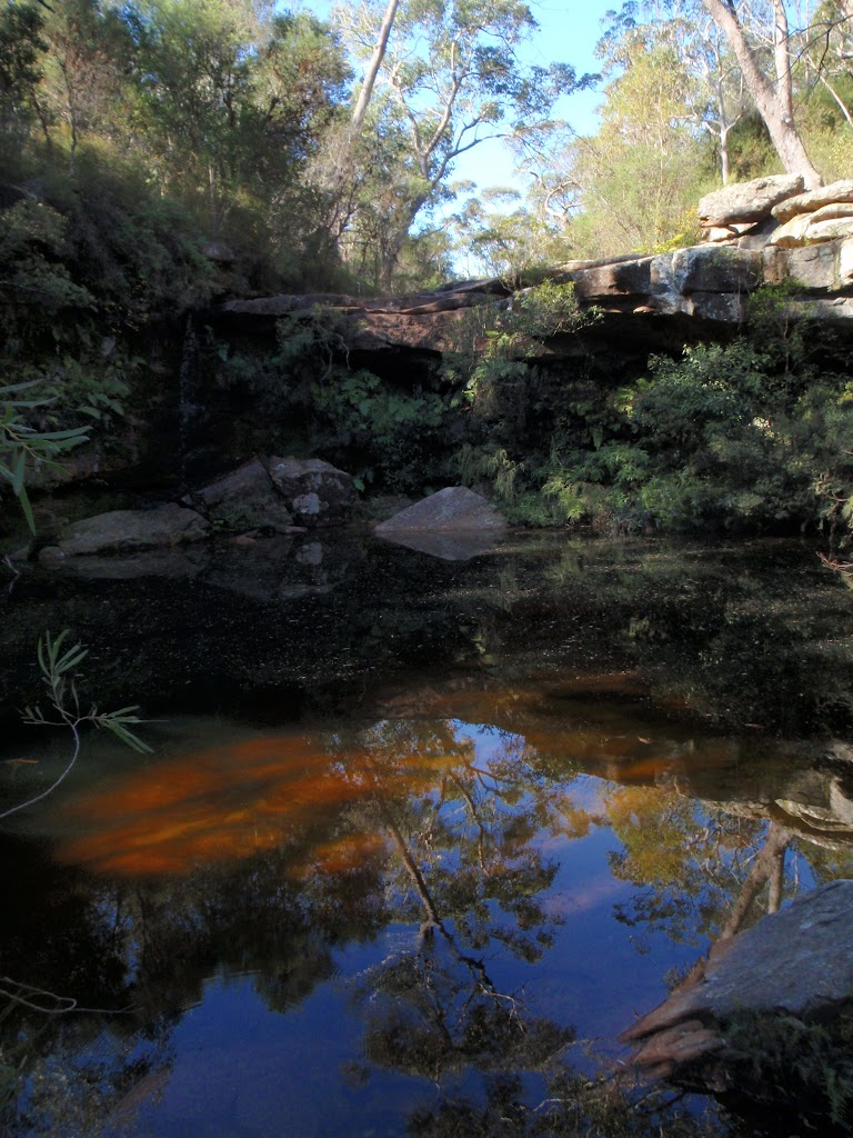 Jeannie's pool (200920)