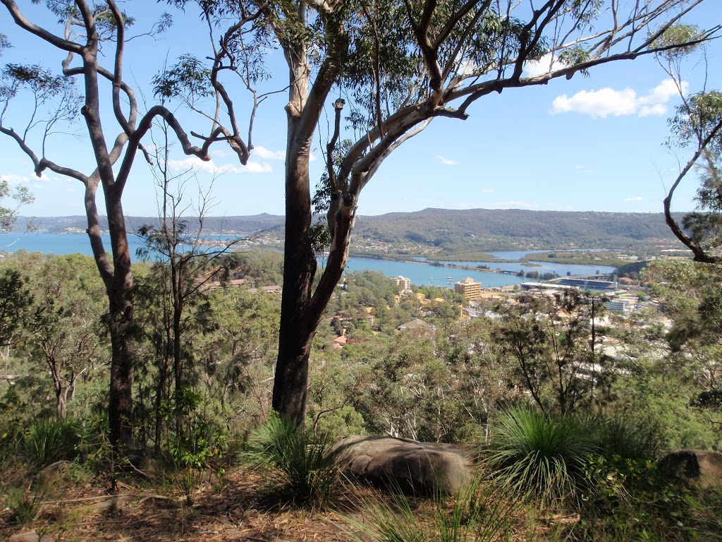 Views over Gosford to the water