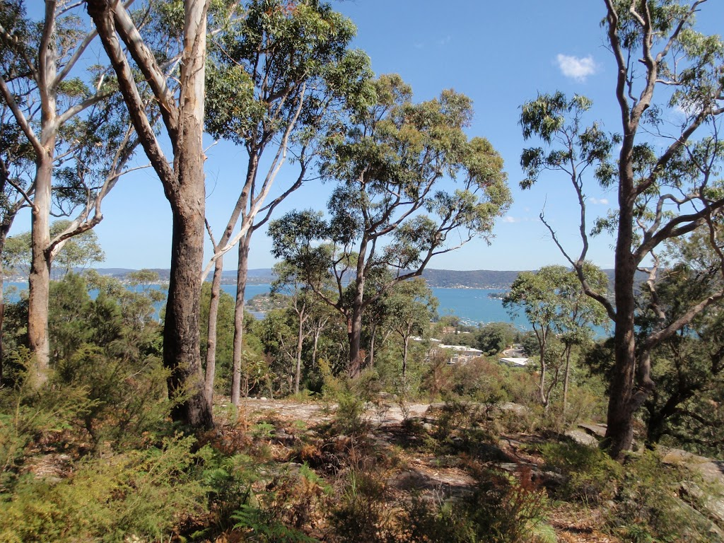 Views from Ouraka Point (201979)