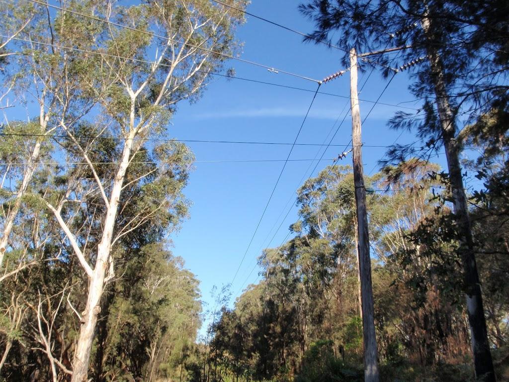 Powerlines overhead