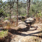 Meander through the rocks (203074)