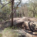 Nice rock outcrops (203077)