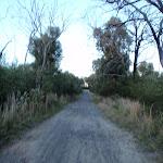 Tunnel track near Woy Woy Rd (204043)