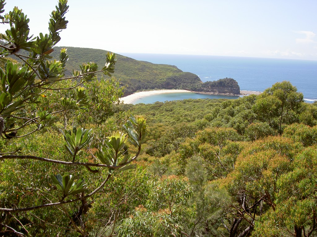 View from Maitland Bay Track over the bay