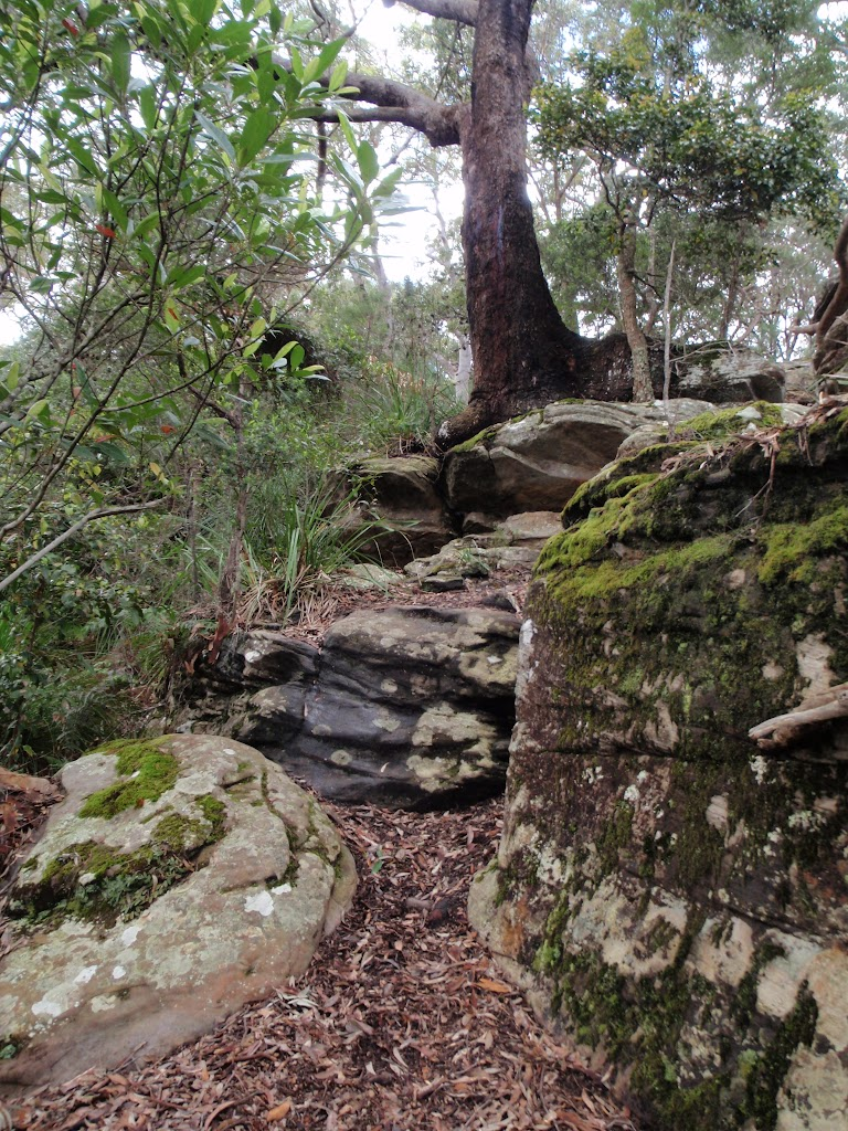 Rocks at the lower end of the Midway Trail