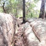 Cleft in rock on Highway Ridge track (205522)