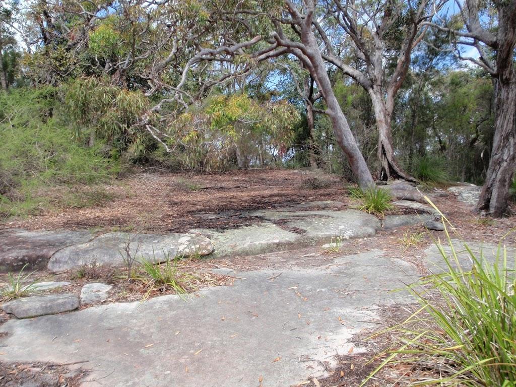 Tumblecowii flat rock clearing