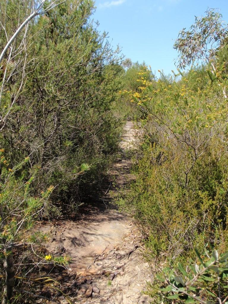Highway Ridge track