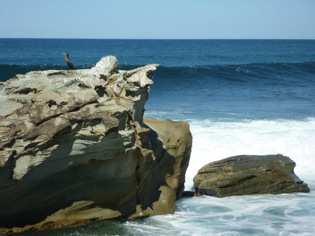 Shoreline scenery