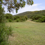 Tallow Beach camping area
