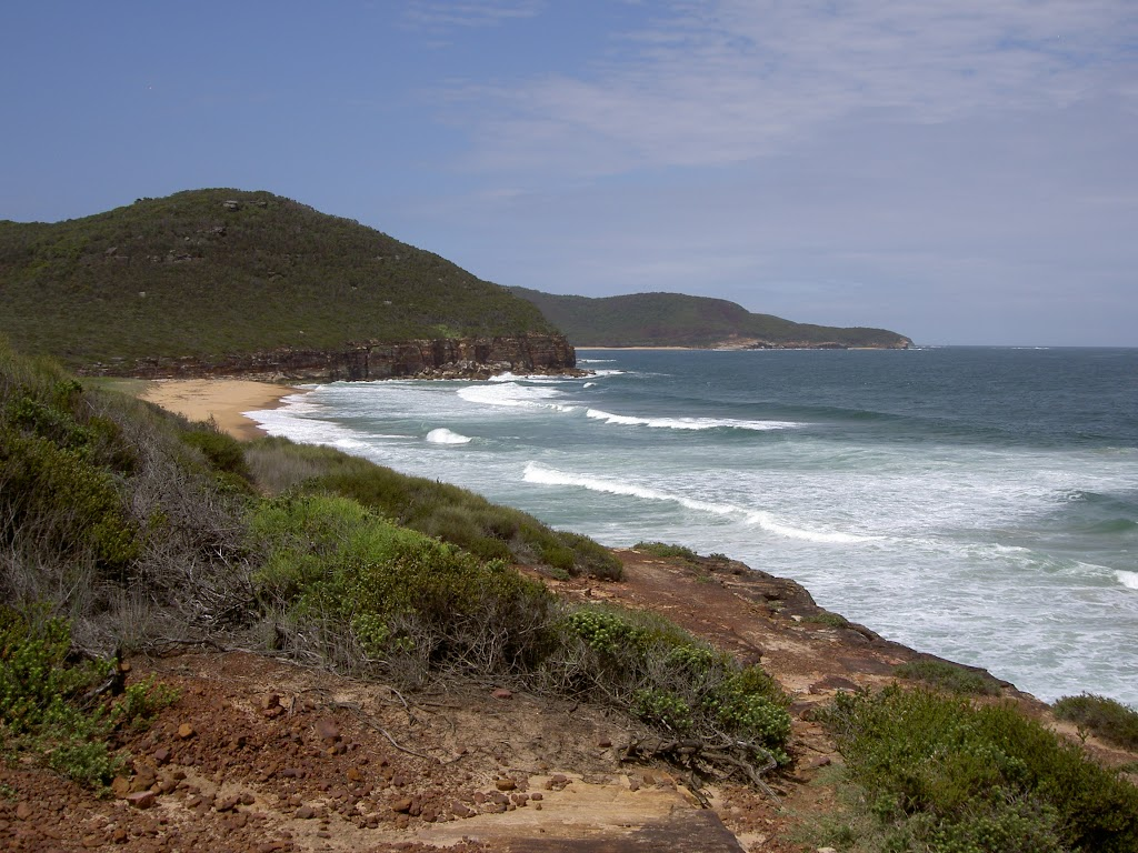 Tallow Beach from headland between Tallow and Little Tallow Beaches (20939)
