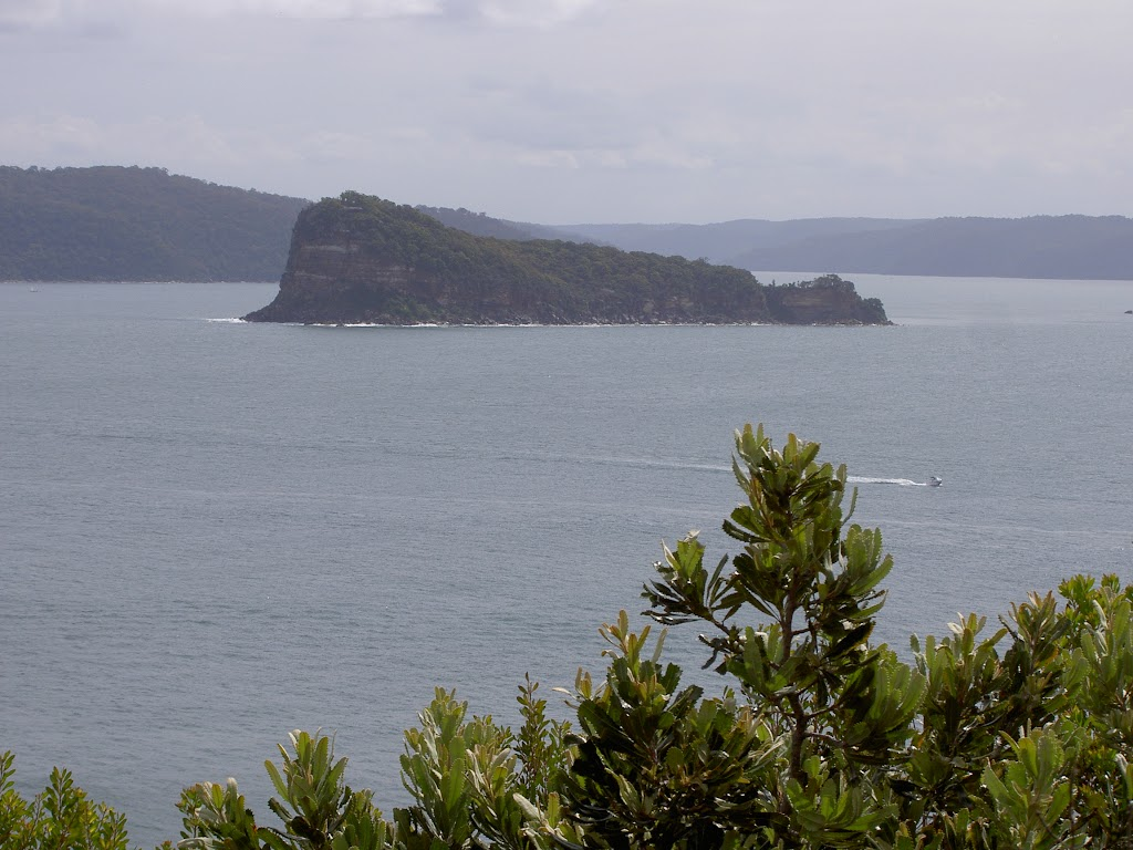 Lion Island from Box Head bushtrack